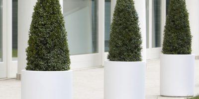 Nicoli vaso esterno bianco circolare palermo